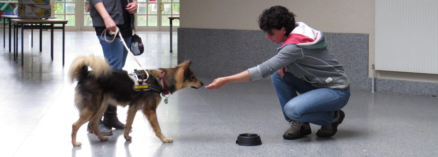 TiertrainerInnen-Ausbildung 1