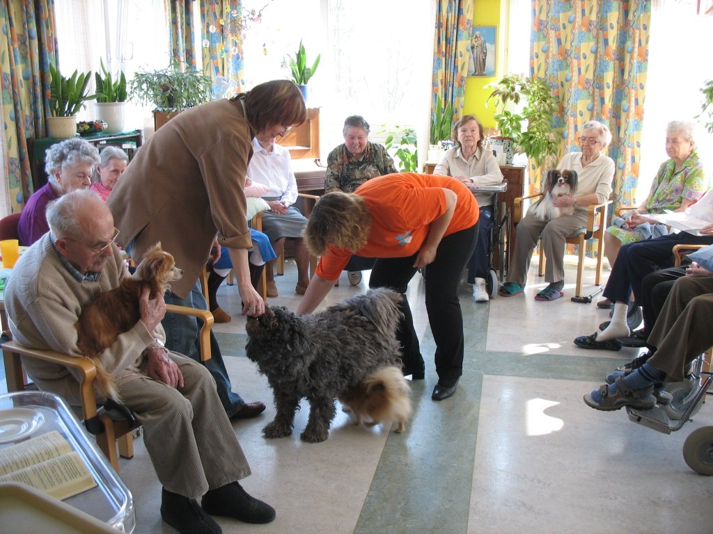 Tiertherapie