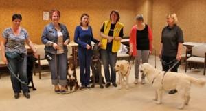 Start Junghundevorbereitungskurs 4.4.2014