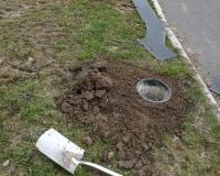 Alle paar Meter werden Kübel in den Boden eingegraben in denen sich die Kröten später sammeln.