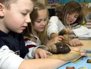 Kinder mit Achatschnecke