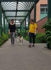 Prüfungstraining @ TAT Zentrum für Mensch-Tier-Begegnung